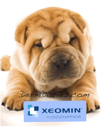 Xeomin new botox shar pei dog puppy